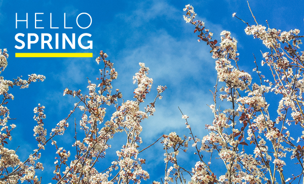 HELLO SPRING – What's in Season?